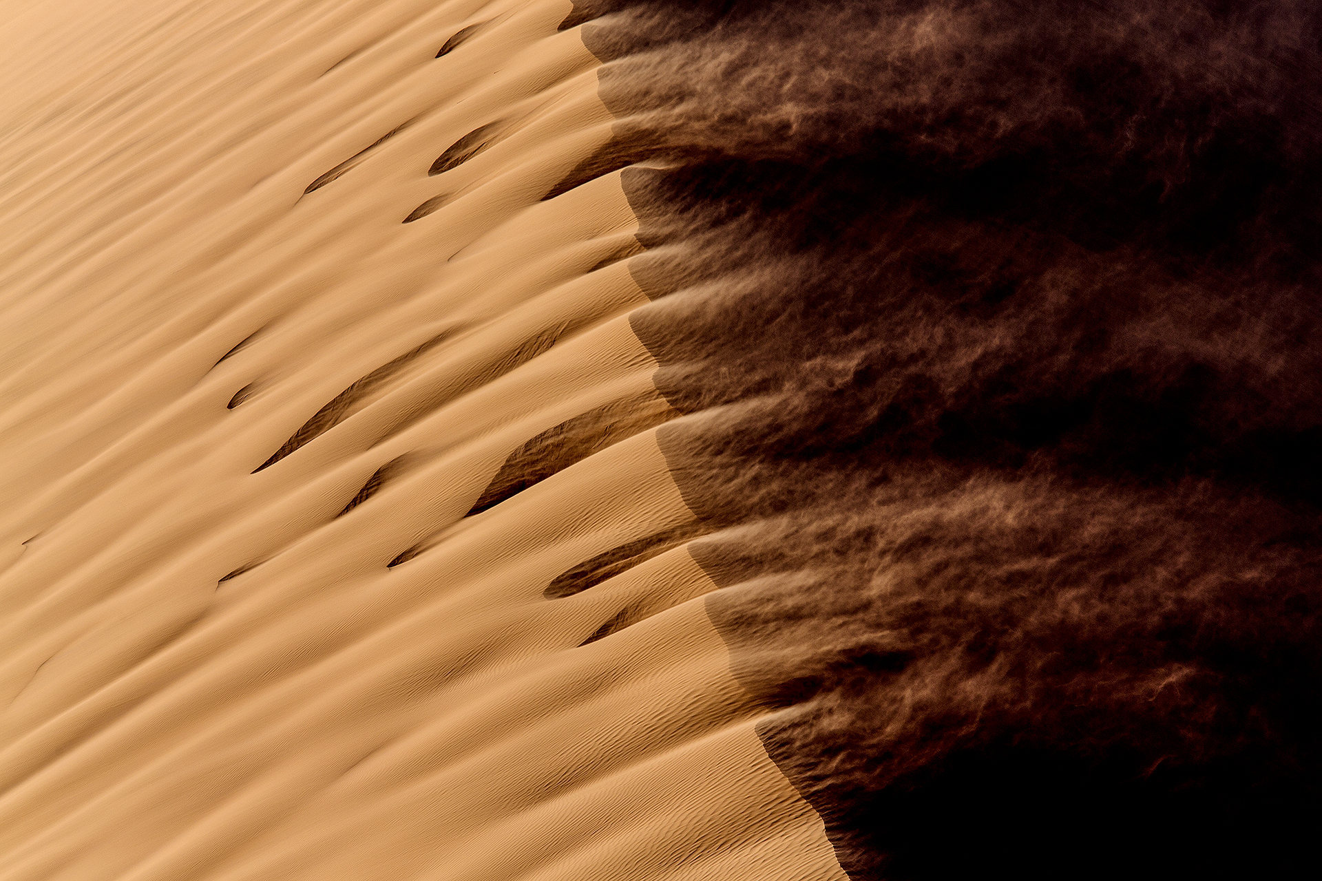 Namibia-Signature-Safari-III-1